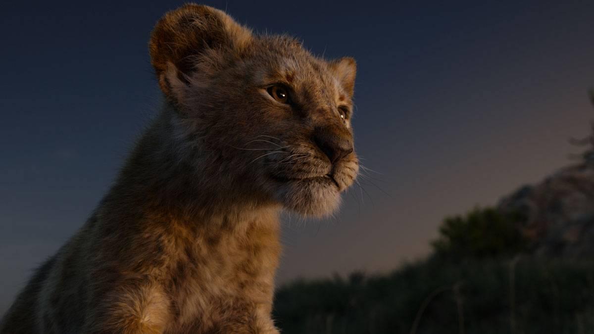 獅子座渴望得到認同,無法忍受孤獨,強大的外表下,也只是個孩子